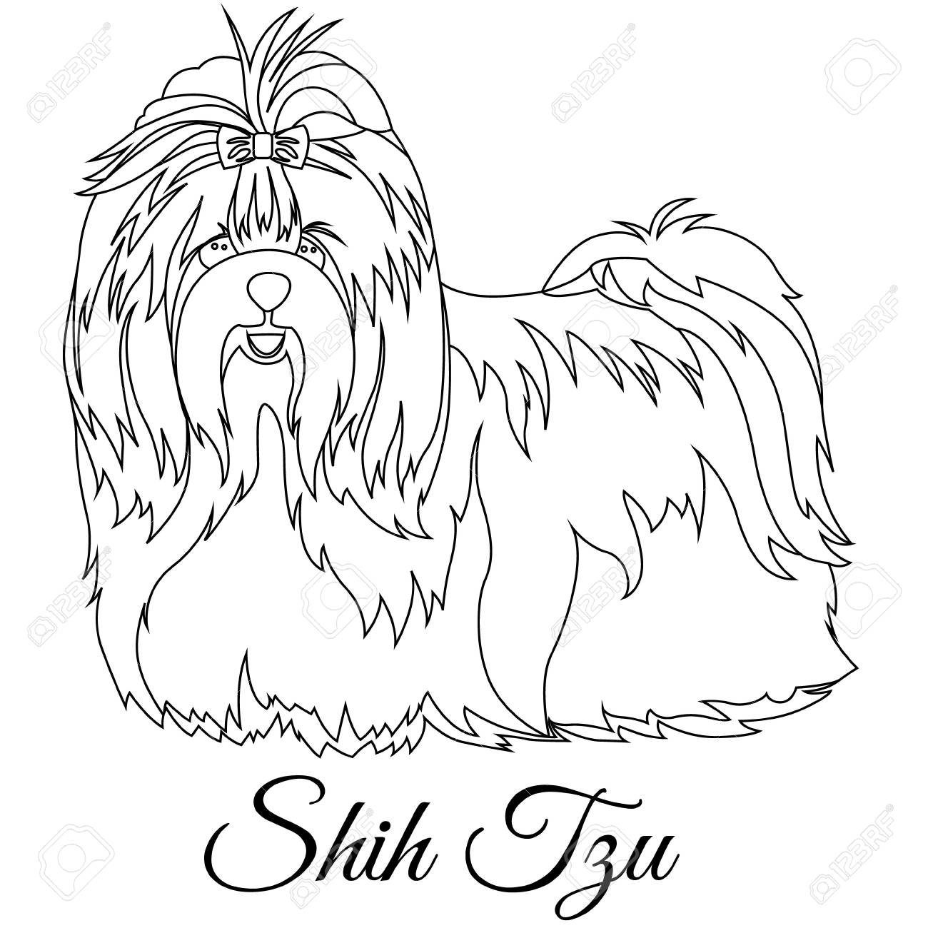 Shih Tzu Outline On White Background Vector Illustration Royalty