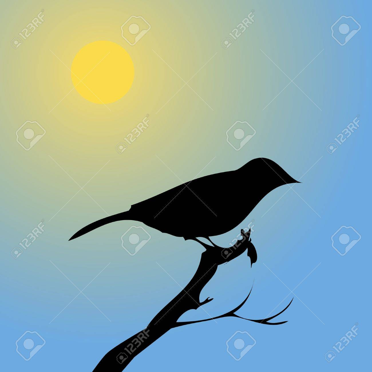 Bird at sunset Stock Vector - 10225898