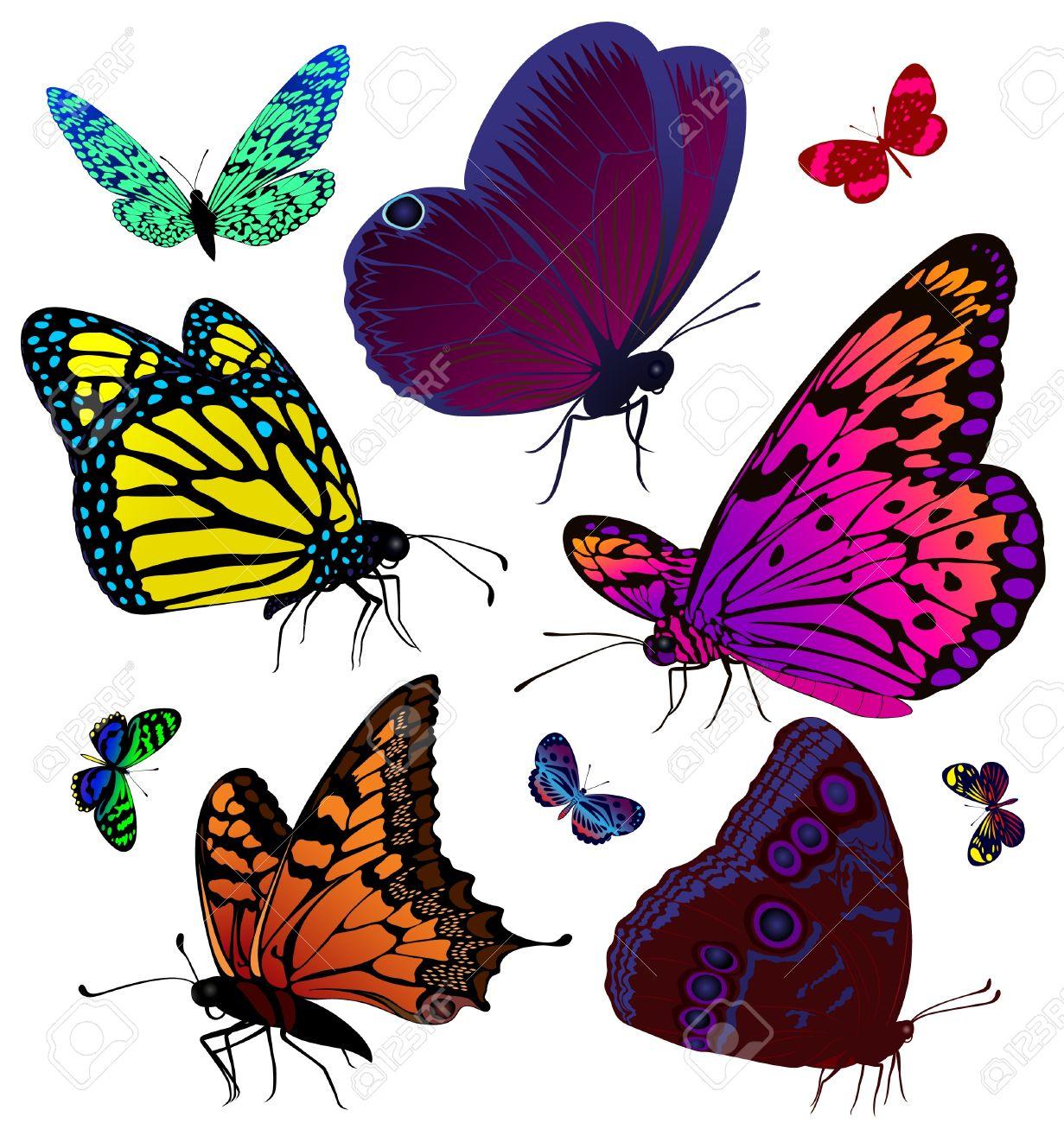 tatuaje mariposa imágenes de archivo vectores tatuaje mariposa