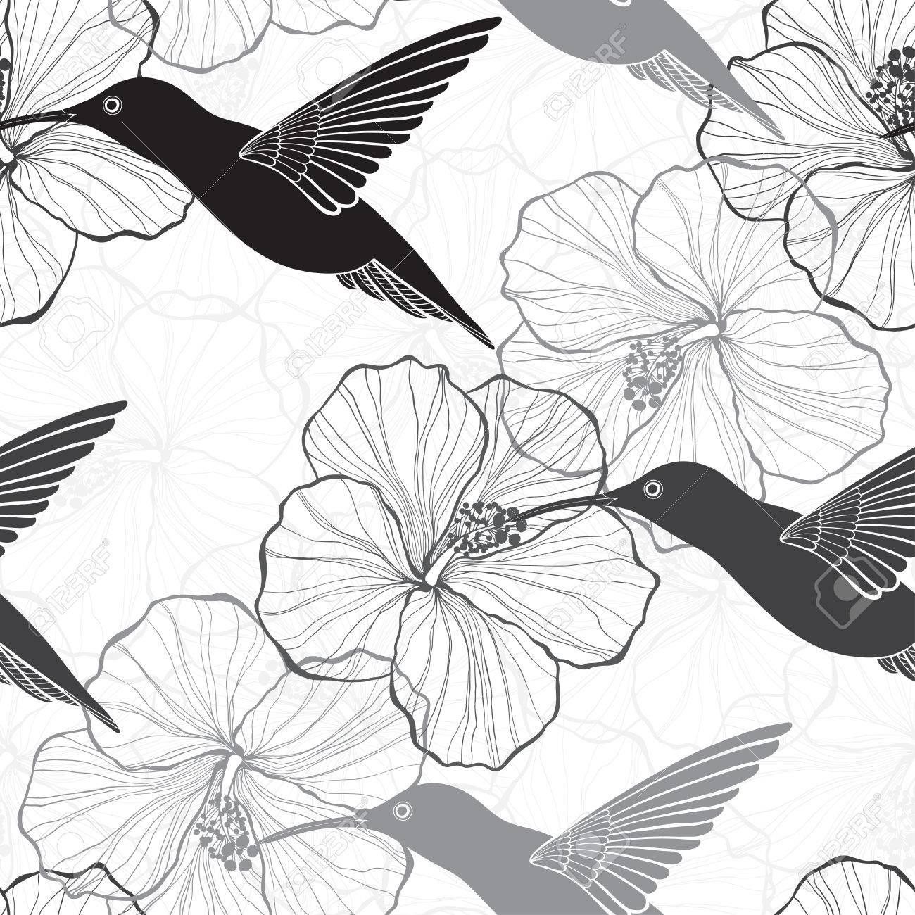 monochrome seamless fleurs d'hibiscus et les colibris. clip art
