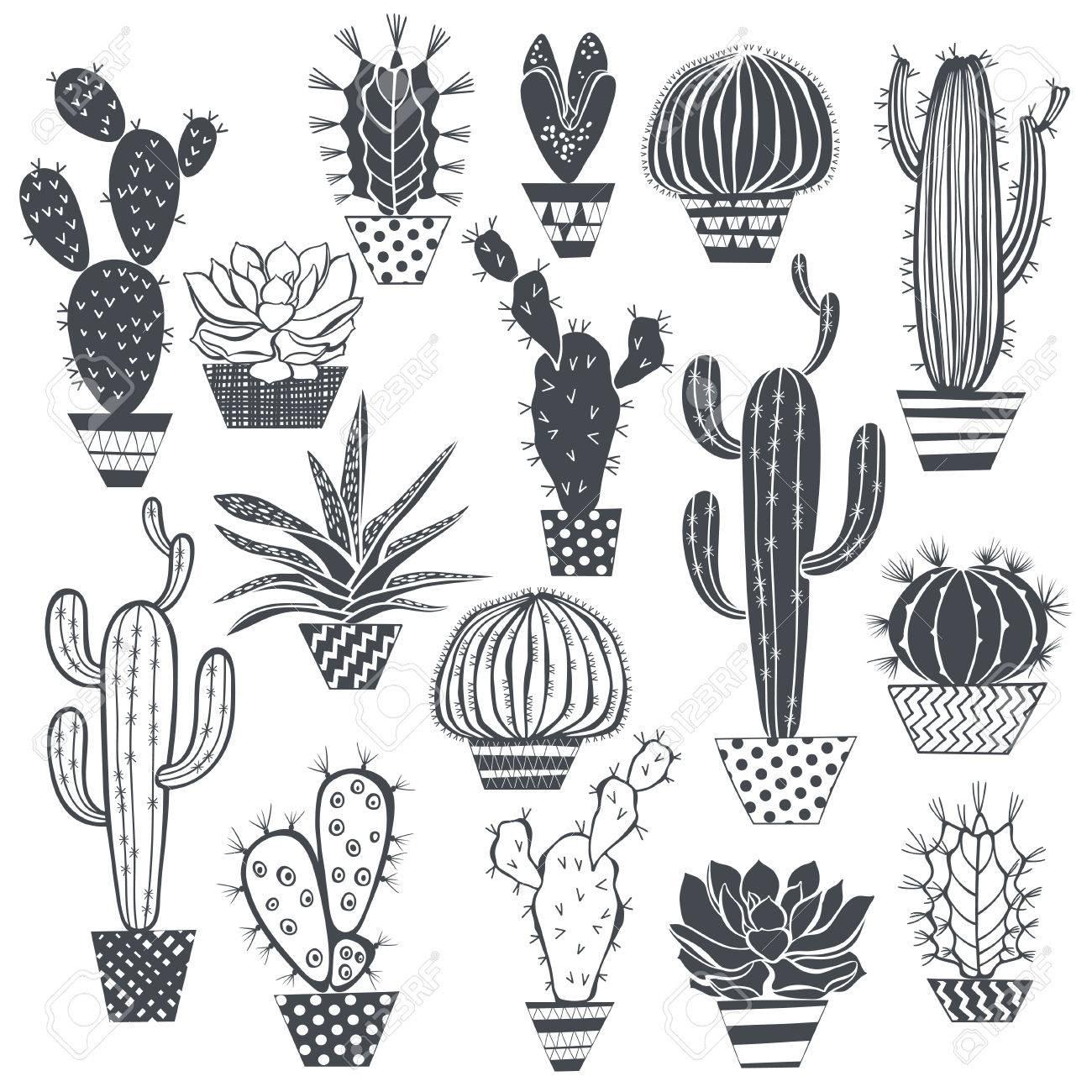 サボテンと多肉植物の白い背景に分離されましたベクトル手の描かれた