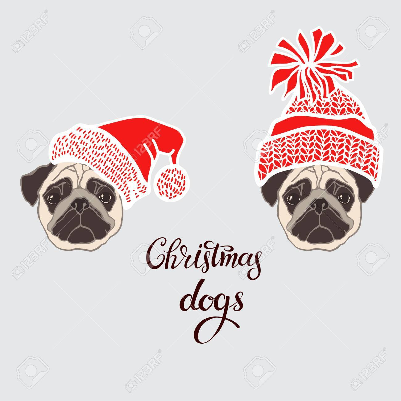 9f9aba3ef00 Pugs. Vector set of dog s face in Santa s hat. Two hand-drawn isolated