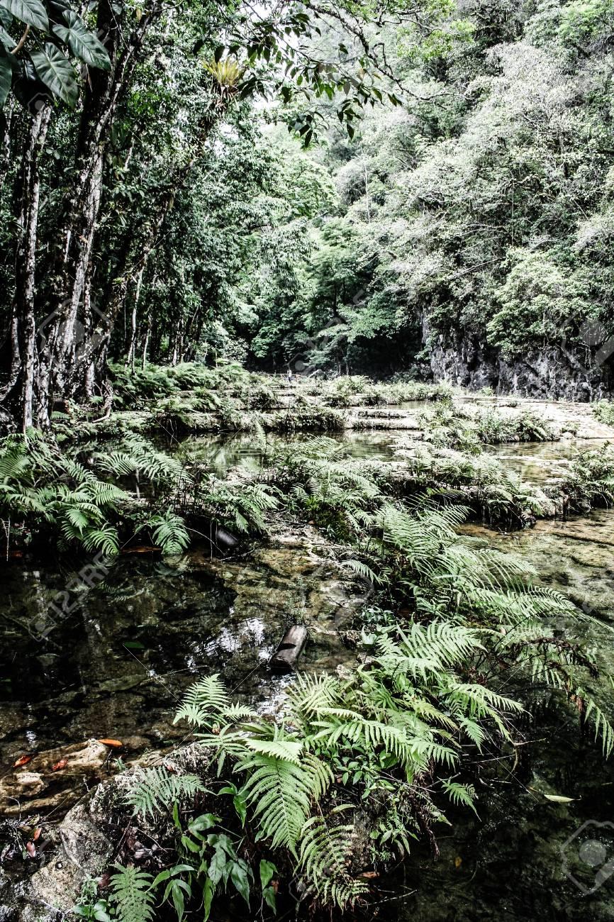 Semuc champey Guatemala paradise - 17653438