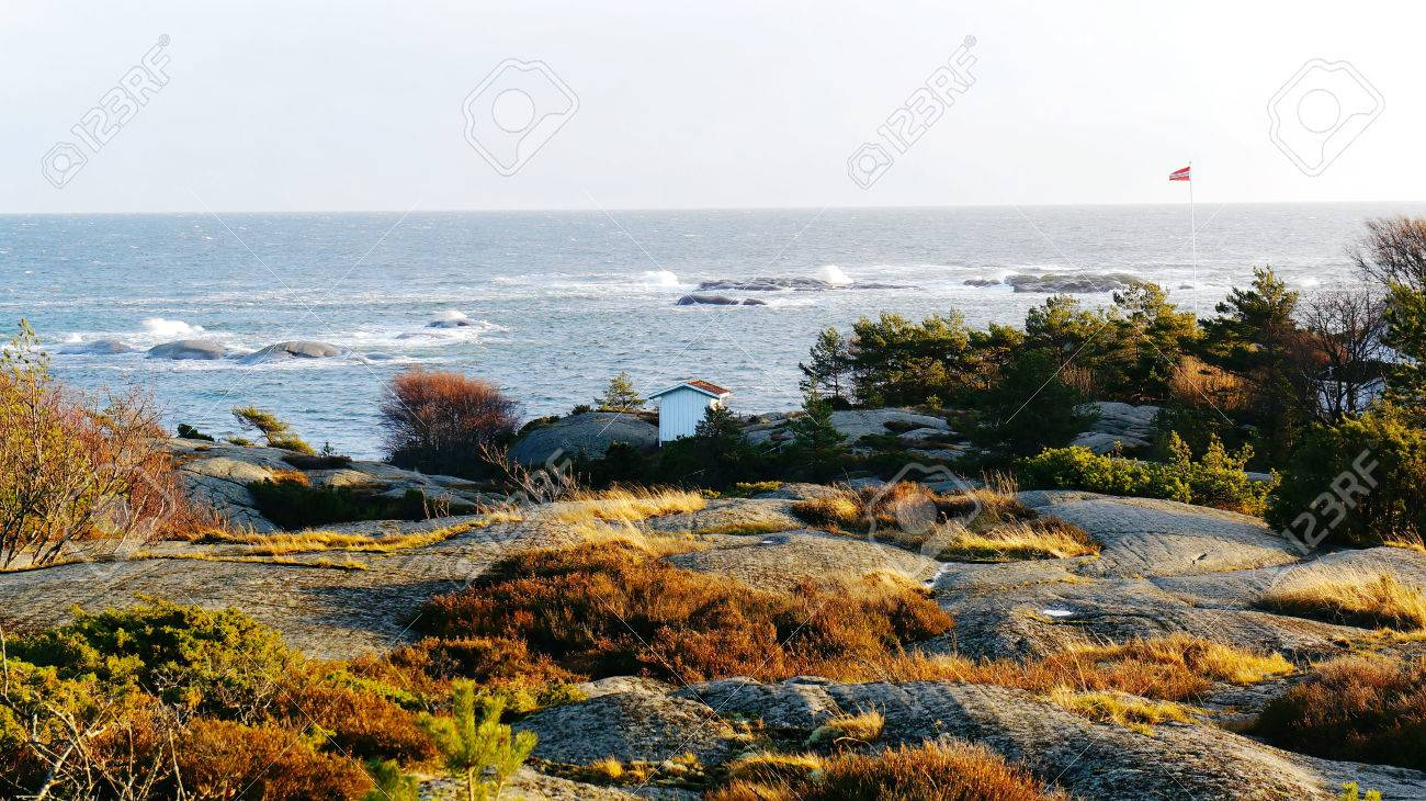[Image: 35252358-Rocky-coast-covered-with-vegeta...-Photo.jpg]