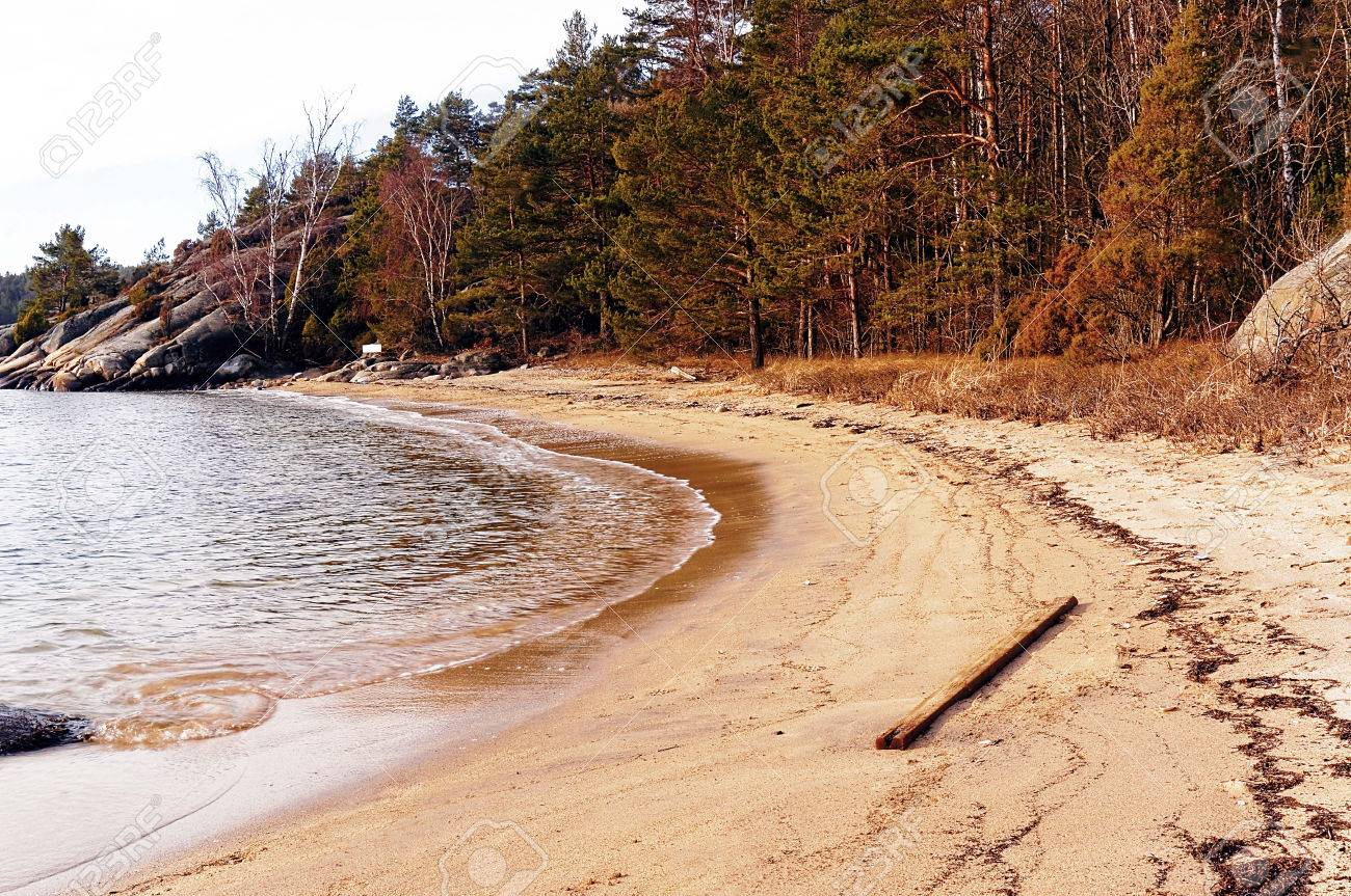 beach on the fjord in early spring region of southern norway