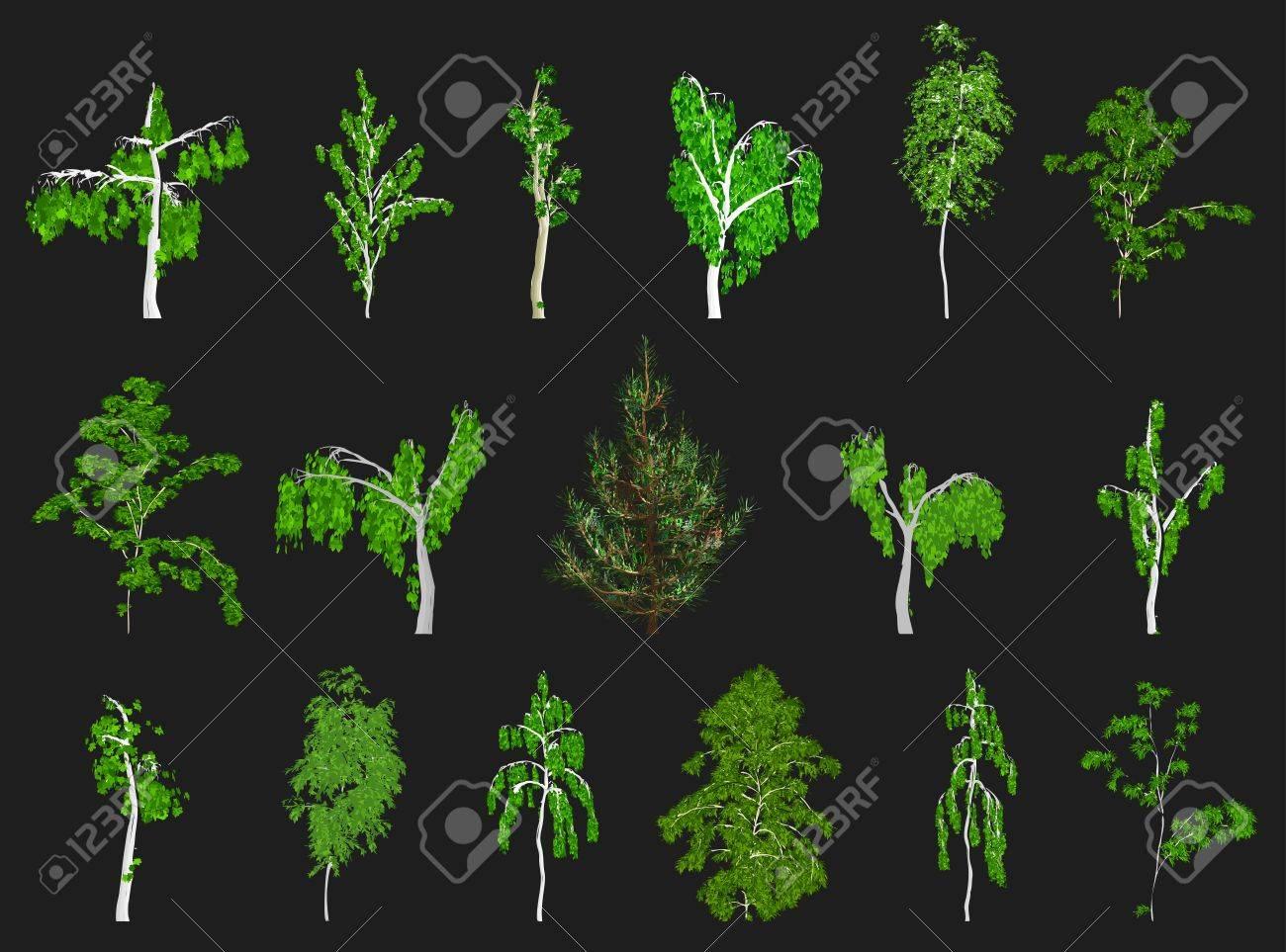 Set of Trees  Vector Stock Vector - 12931204