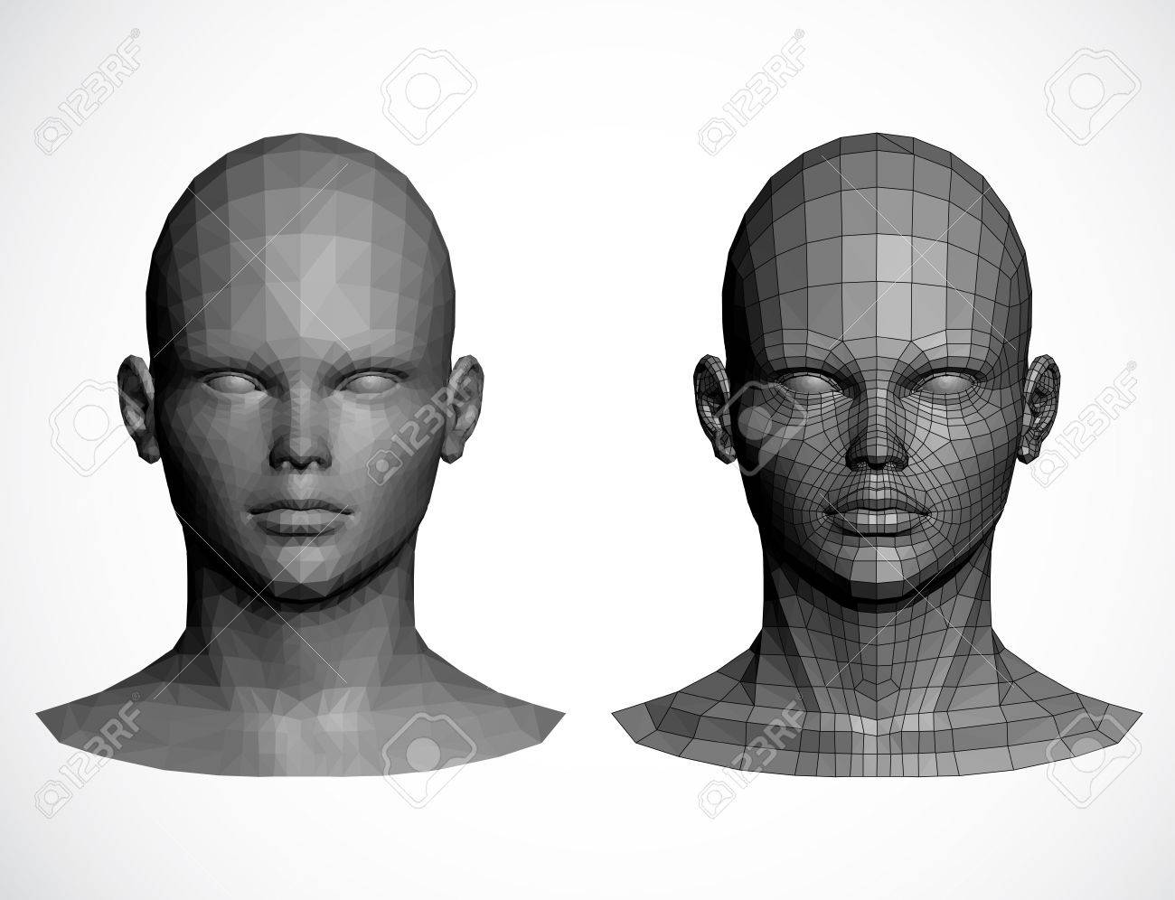 Female heads  illustration Stock Vector - 13075071
