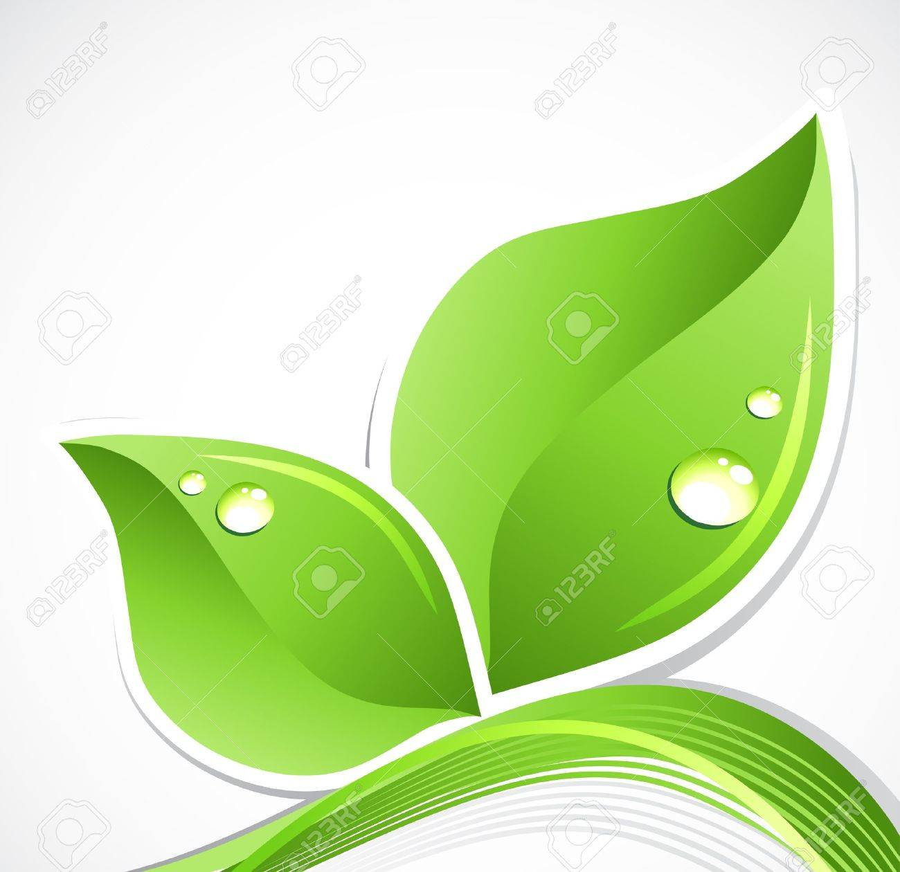 Green leaf with water droplets  art illustration Stock Vector - 15166324