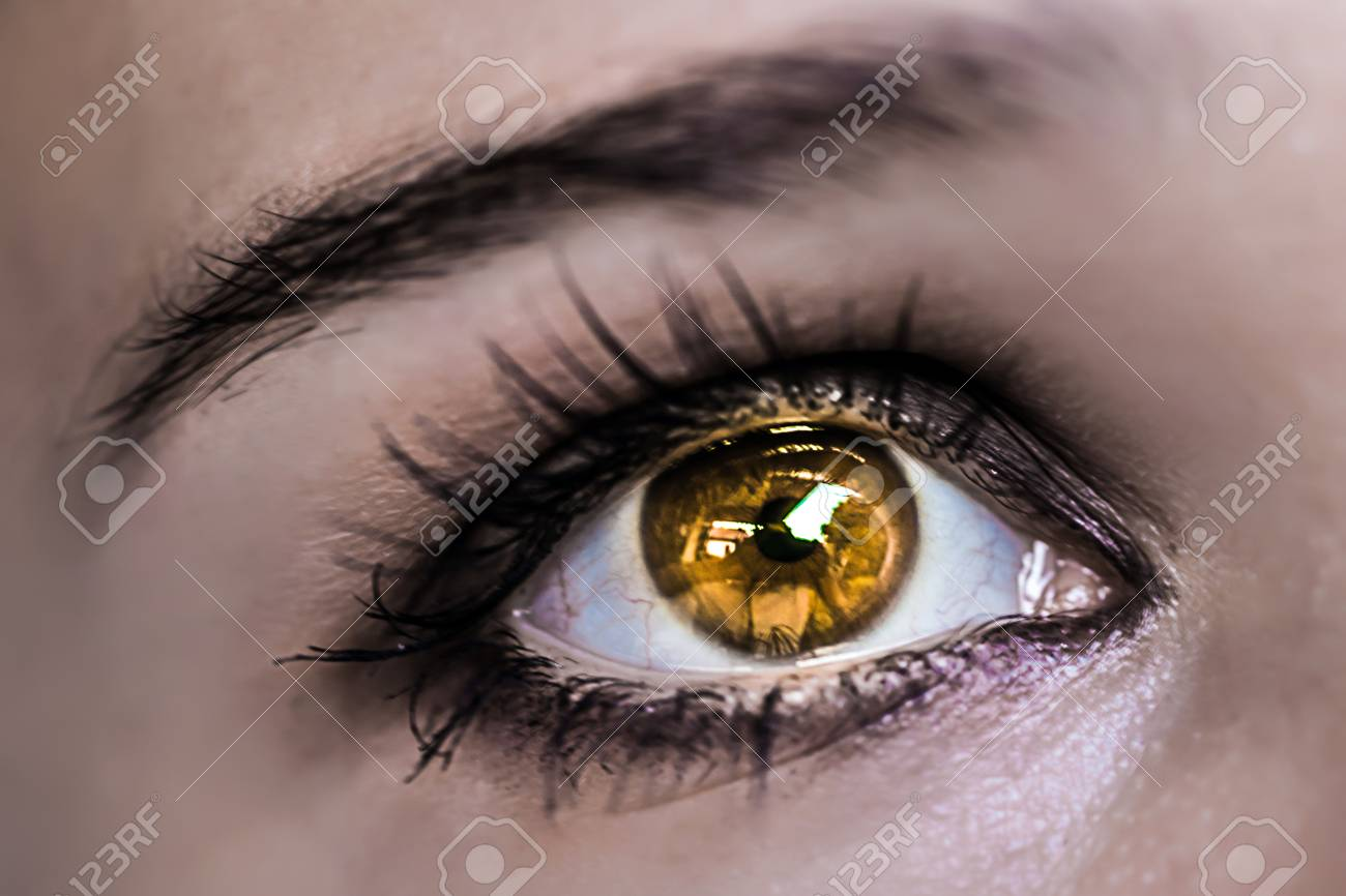 Yellow Eye Makeup Beautiful Eyes Make Up Macro Stock Photo