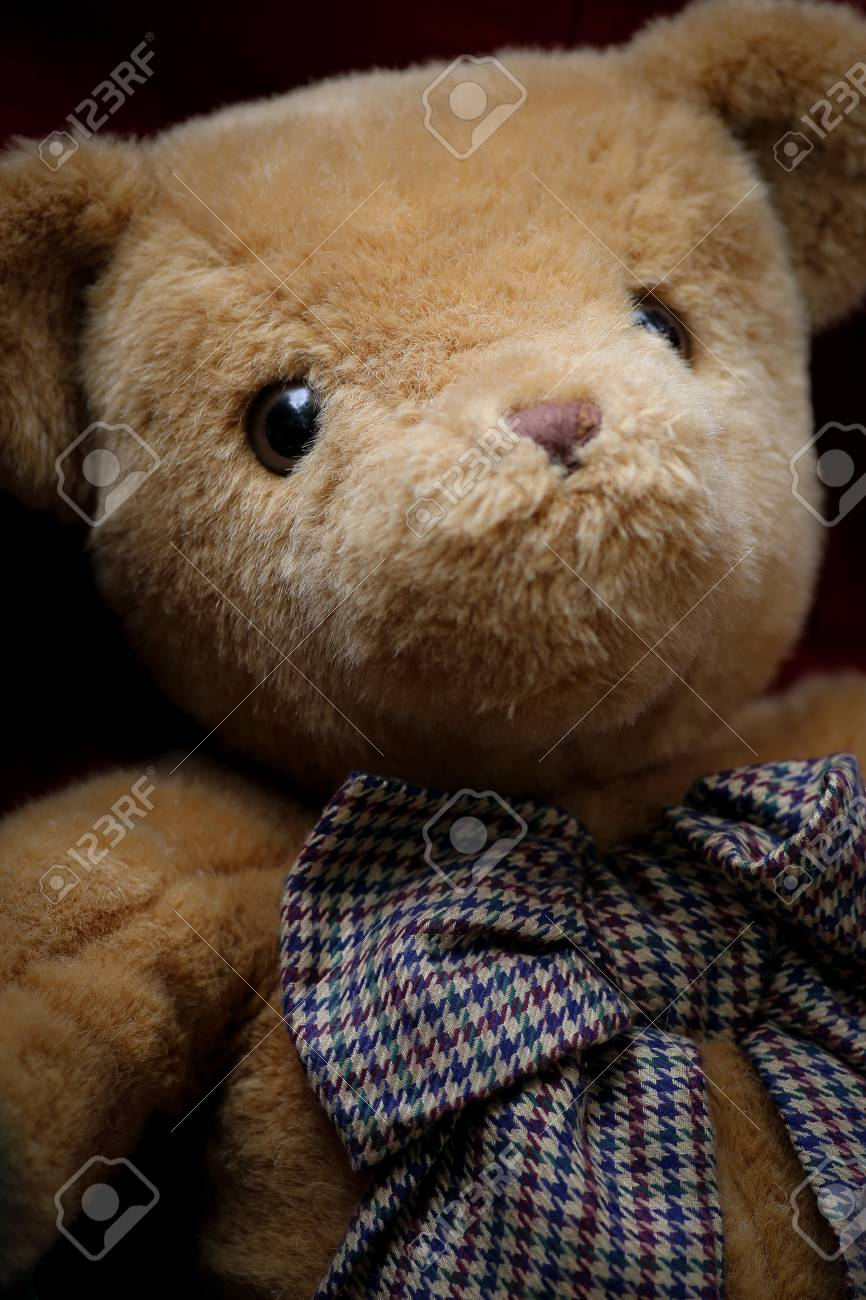 Hay Hay Chicken Stuffed Animal, Fluffy Teddy Bear With Big Bow Ribbon Stock Photo Picture And Royalty Free Image Image 21516633