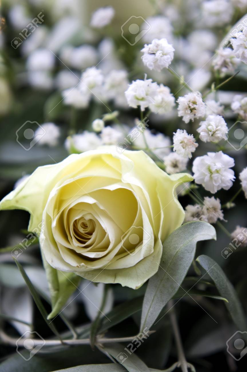 Flower Bouquet With Yellow Rose Close Up Under Sunlight Stock Photo