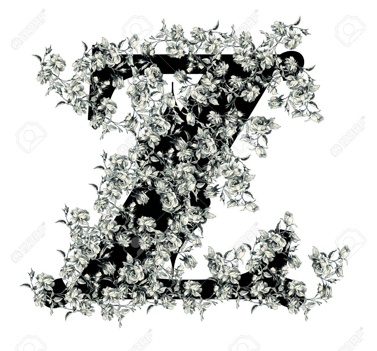 Luxuriously illustrated old capital letter Z with flowers. Stock Photo - 6714528