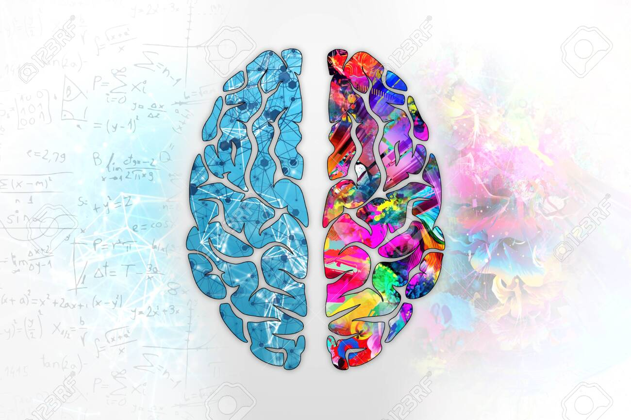 Illustration of a human brain, top view. Different halves of the human brain. The creative half and logical half of the human mind. - 121998132