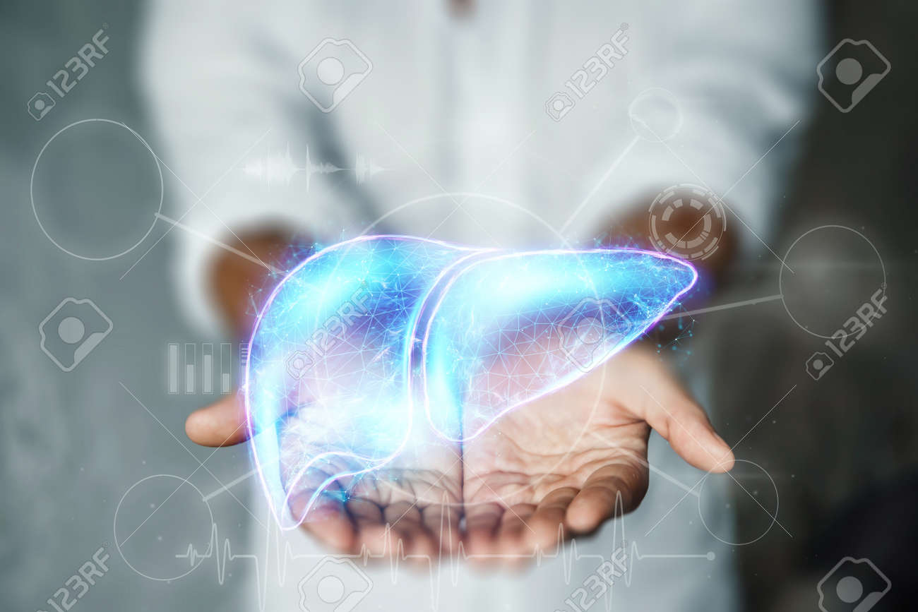 The doctor has a liver hologram in his arms. Human hepatitis treatment business concept, donation, disease prevention, online diagnosis - 162570161