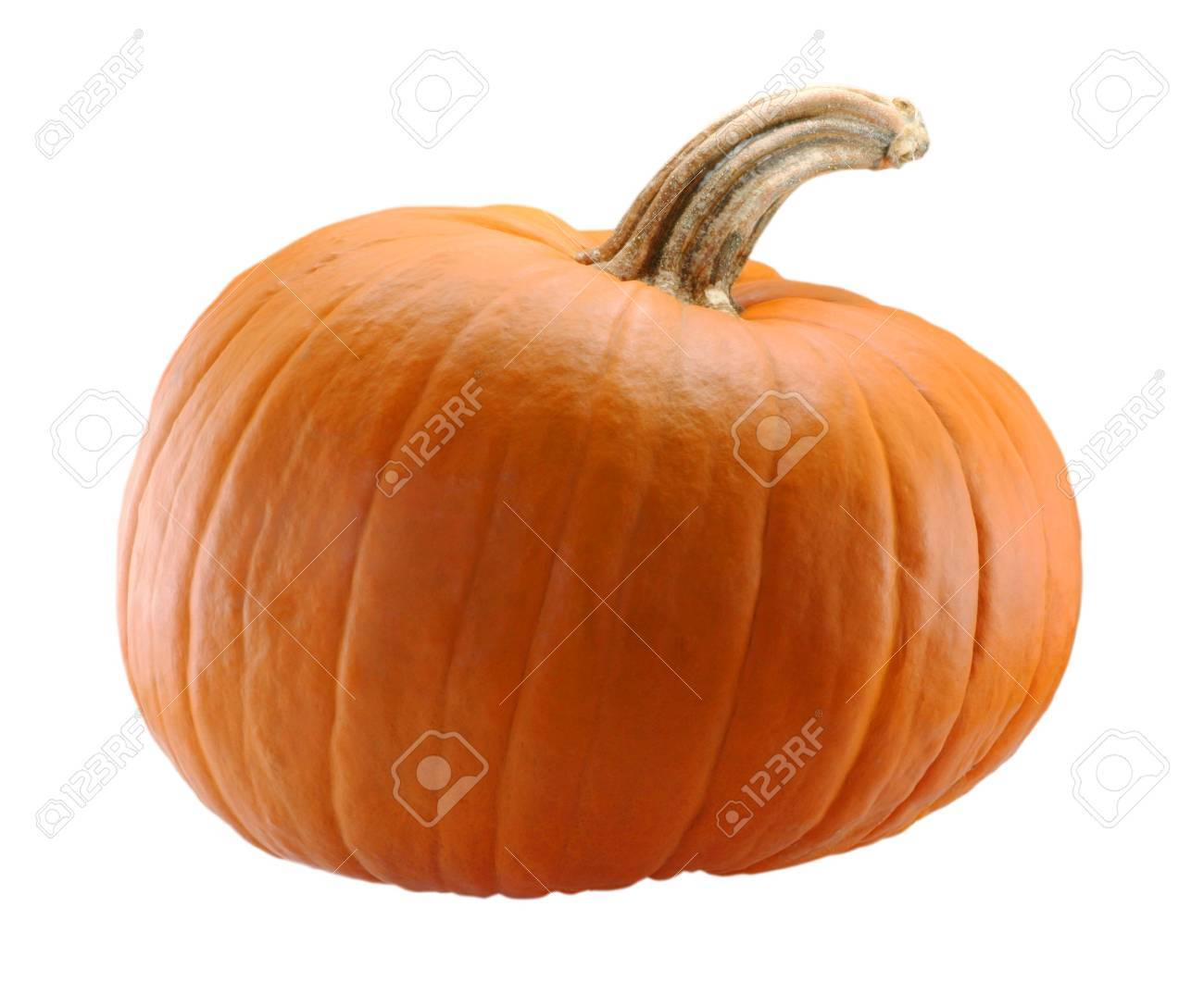 Pumpkin Isolated On White Background With Brown Stem Stock Photo Picture And Royalty Free Image Image 1862468