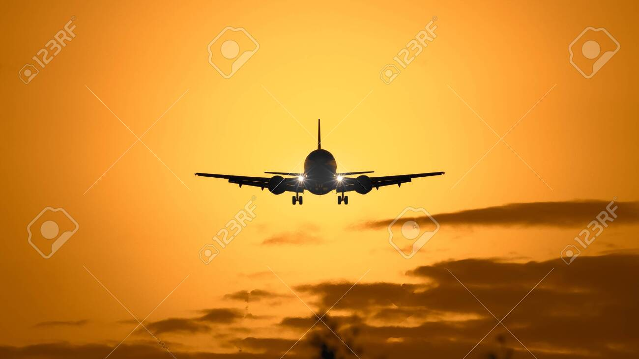 A photography of a jet air plane in sunset sky - 130128613