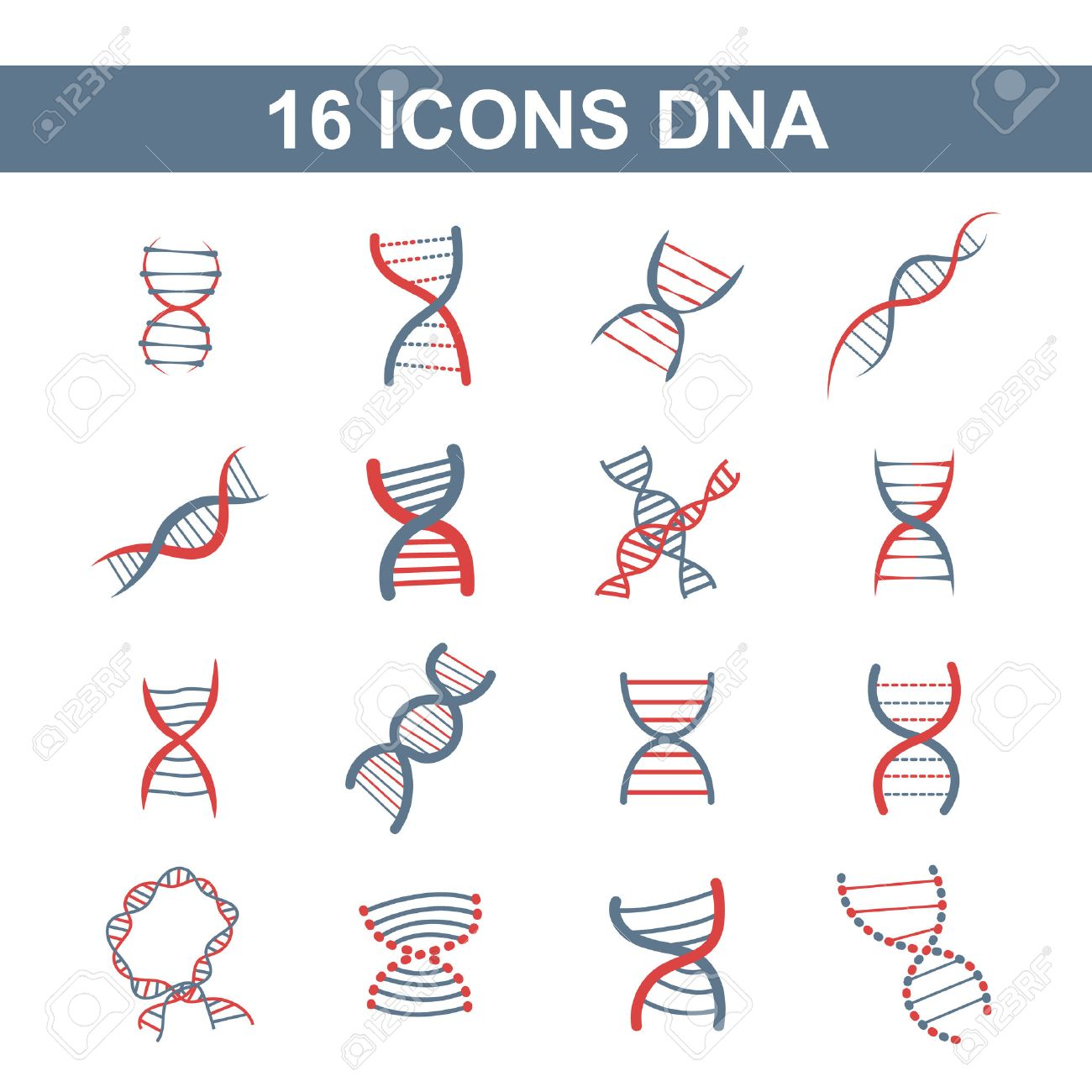 set of different style of scientific icons with spiral DNA in blue and red color on a white background - 34209458