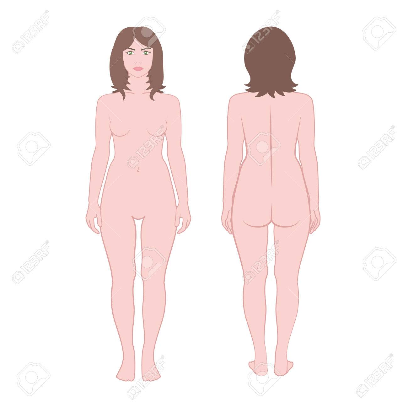 Vector Vector Girl On A White Background Front And Back Without Clothes Woman In Full Growth