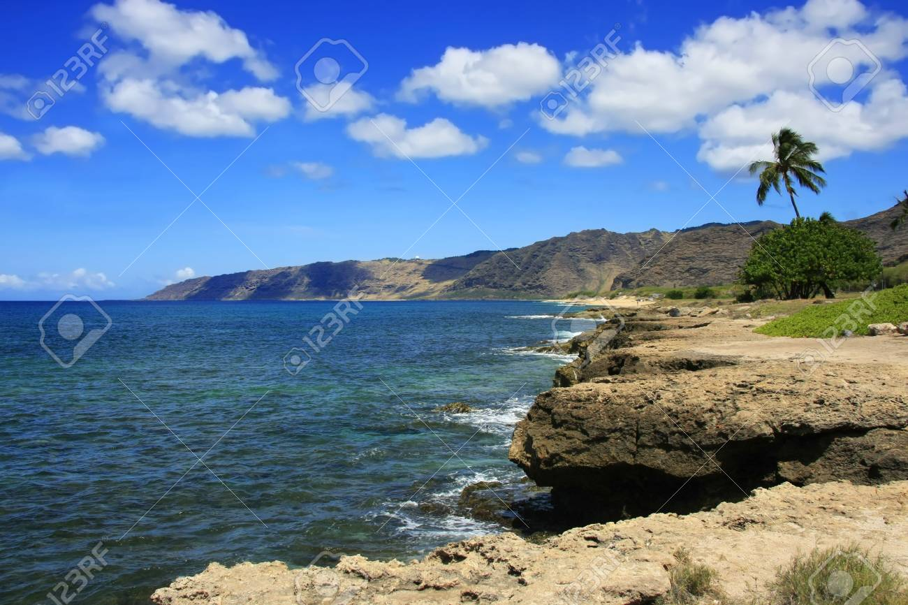 Stony part of the pacific ocean coast in summer Stock Photo - 11011753