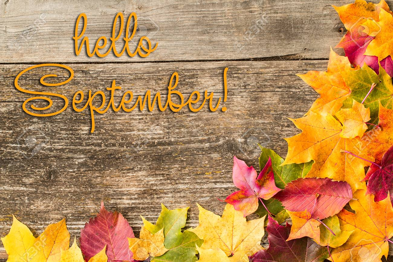126761101-hello-september-lettering-card-concept-of-the-fall-season-autumn-background-with-autumn-leaves-on-th.jpg