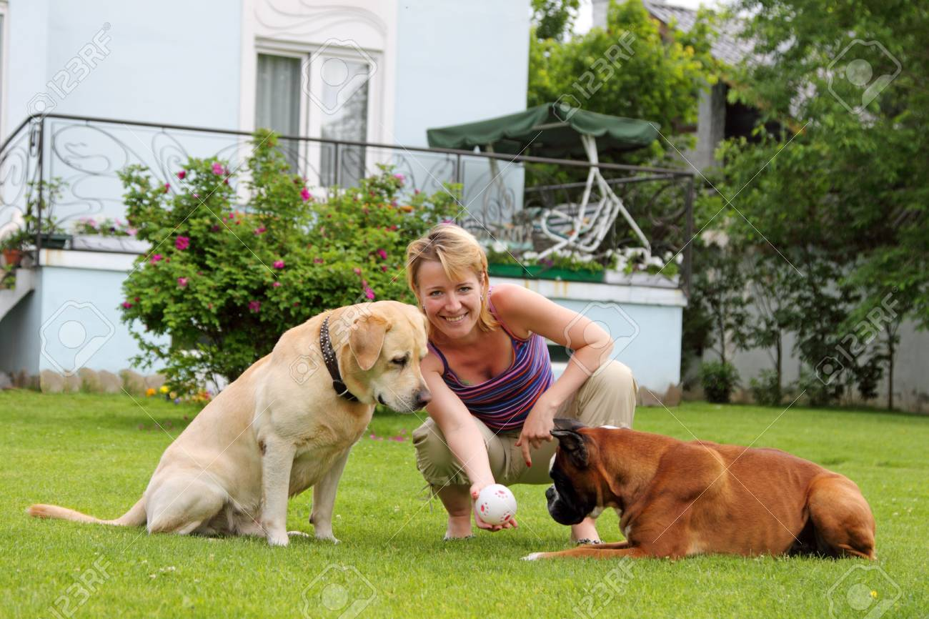 The young woman with dogs on a lawn at the house Stock Photo - 6335438