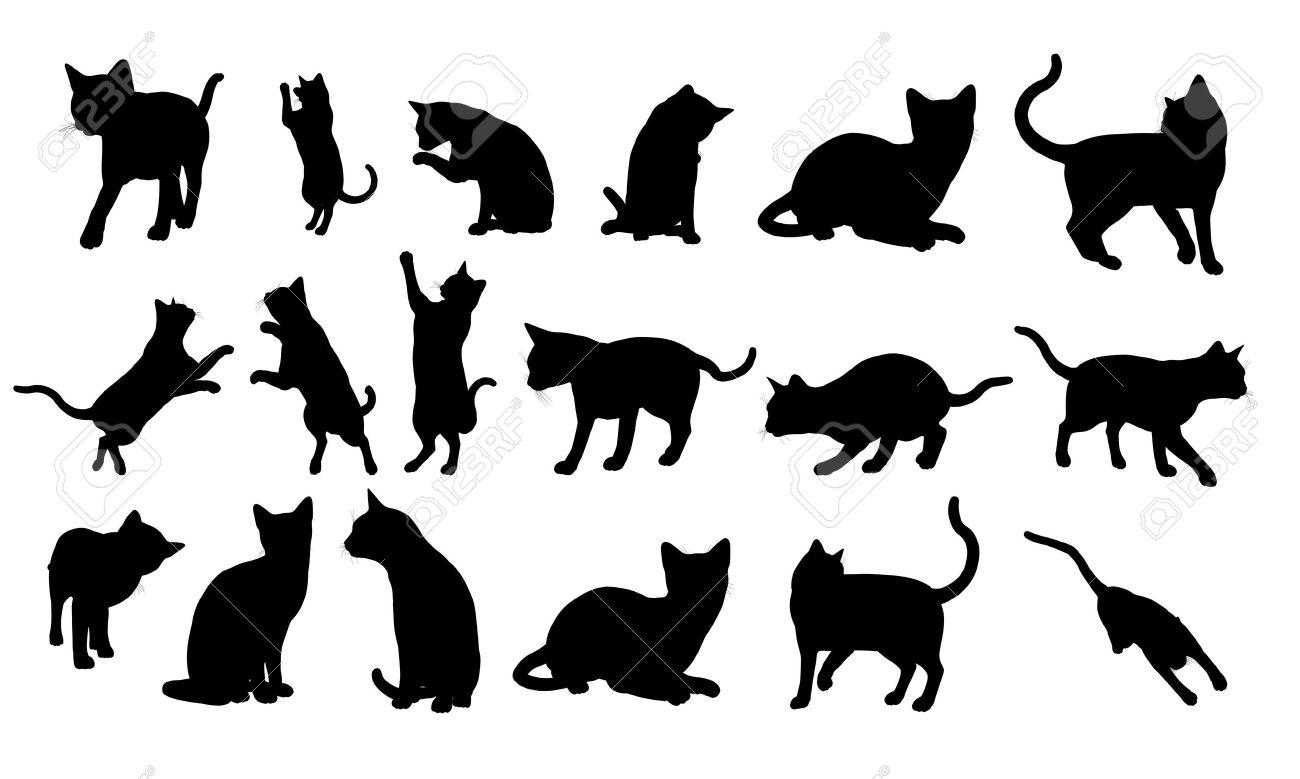 Silueta de gato Foto de archivo - 9836833
