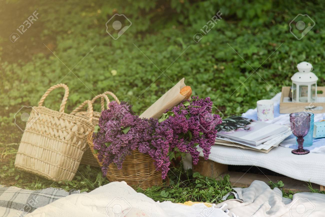 Picnic Decorations Cannotier Flowers Fruits Picnic At The Stock Photo Picture And Royalty Free Image Image 101478749