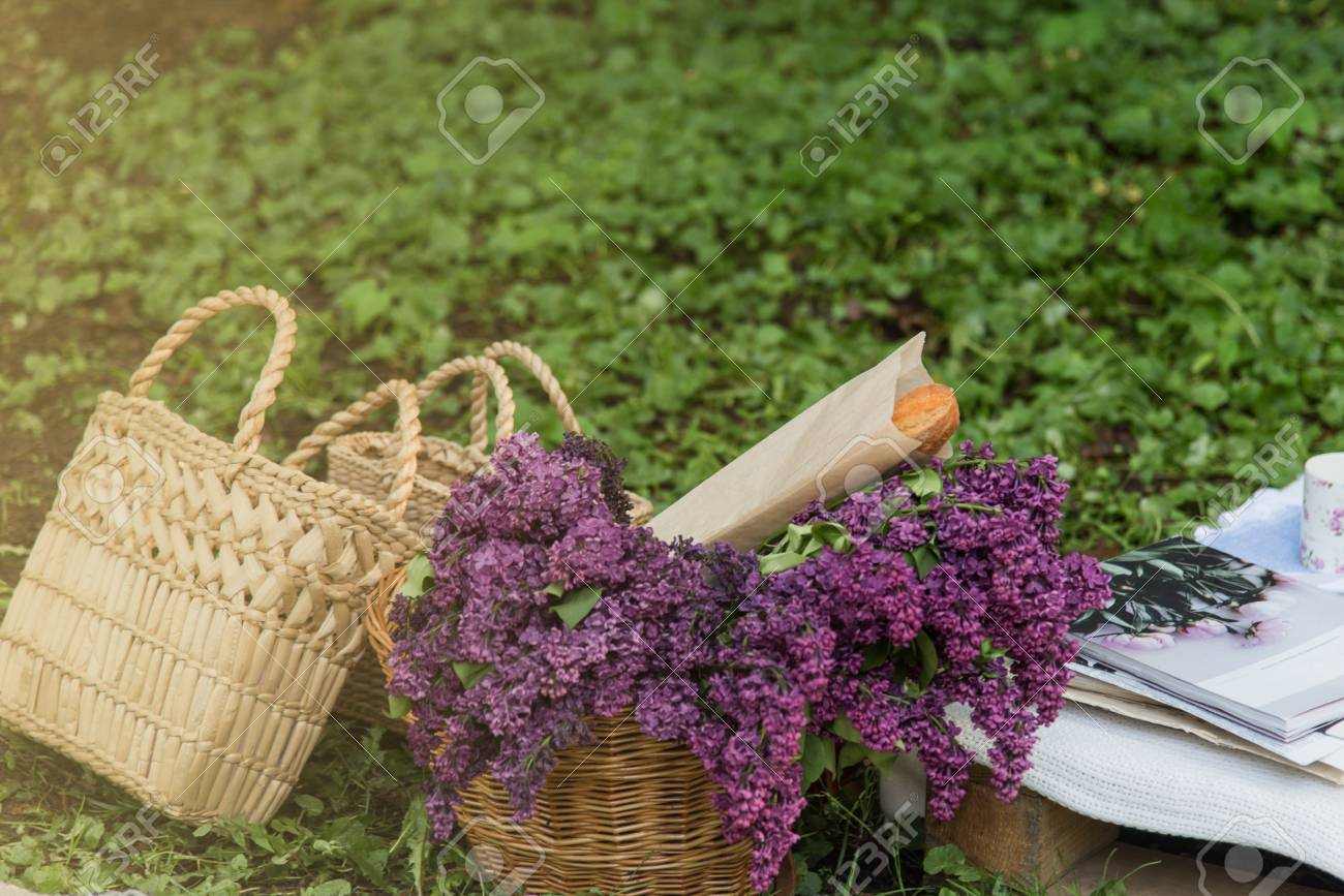 Picnic Decorations Cannotier Flowers Fruits Picnic At The Stock Photo Picture And Royalty Free Image Image 101478750