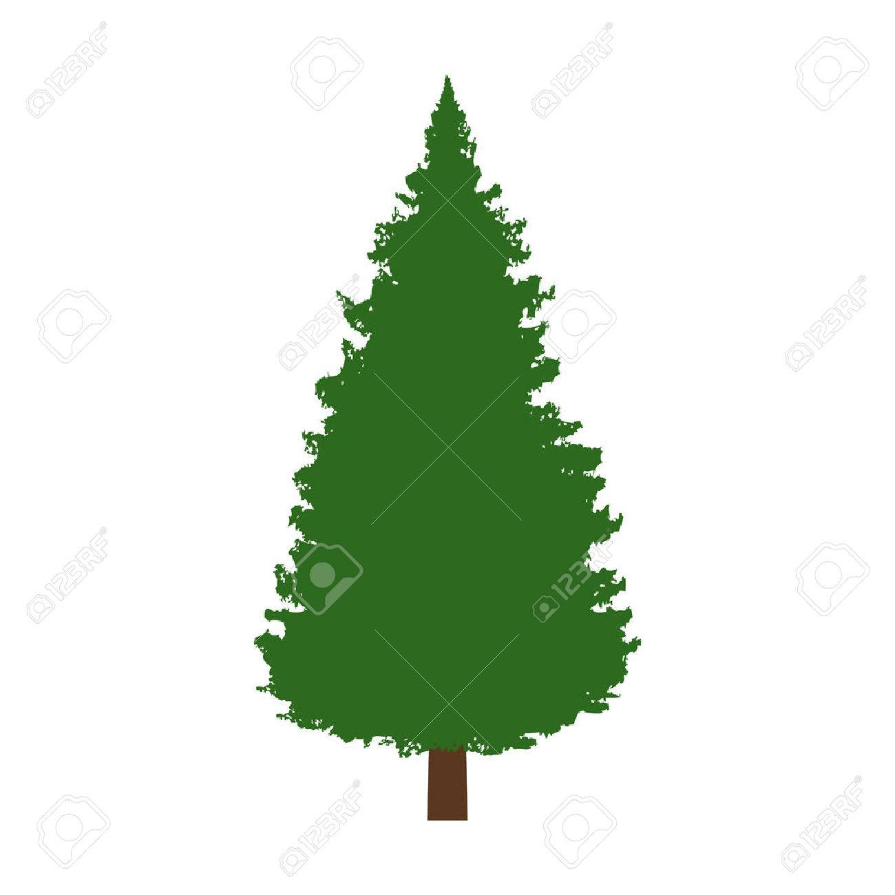 Evergreen conifer / pine tree flat color icon for apps and websites - 55005229