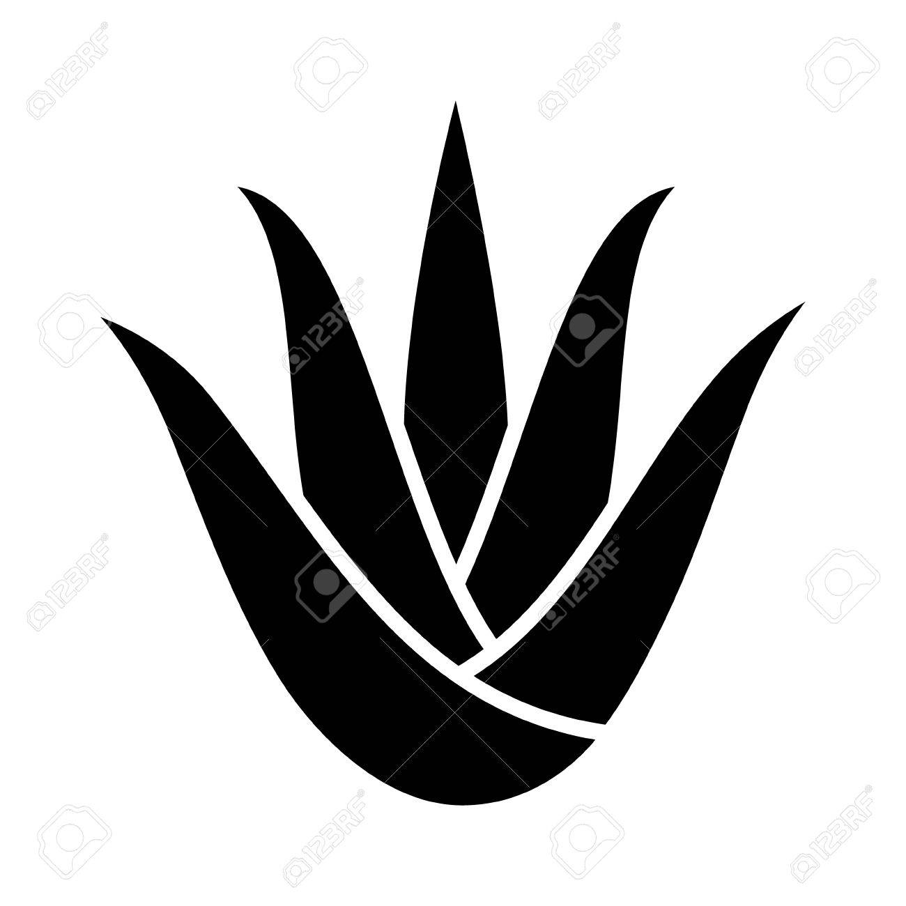 Aloe vera plant with leaves flat icon for apps and websites - 66078508