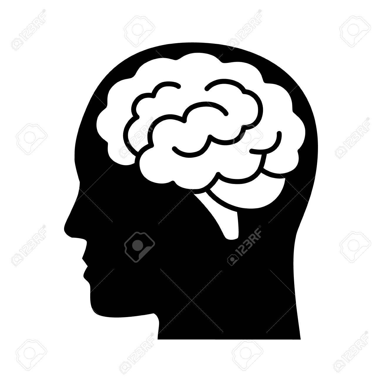 Único Dentro Diagrama Cerebro Molde - Imágenes de Anatomía Humana ...