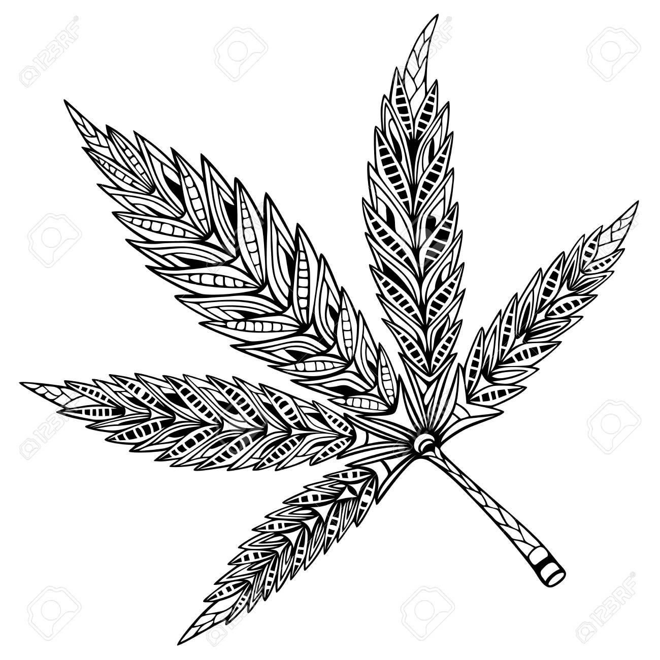 Hoja De Cannabis Estilo Doodle Y Zentangle Dibujado A Mano Libro De Colorear Ilustración Vectorial
