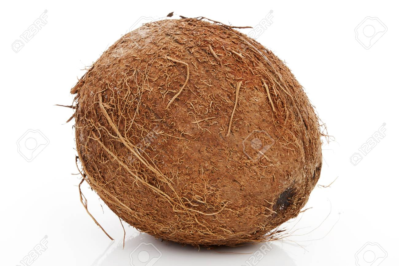 ripe brown hairy natural organic coconut isolated on white