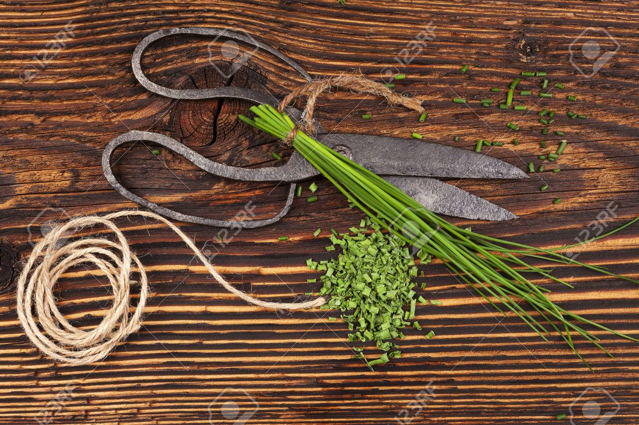 Fresh And Dry Chives Herb With Vintage Scissors On Rustic Wooden ...