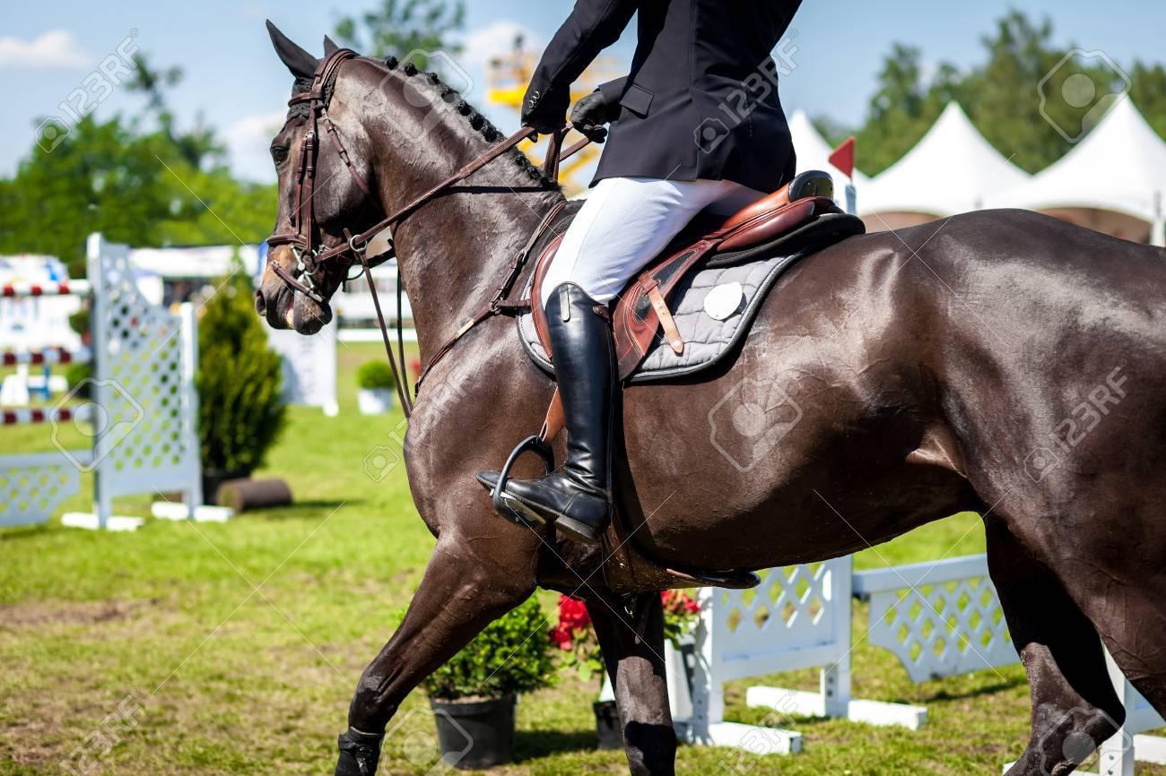 Equestrian Sports Horse Jumping Show Jumping Horse Riding Stock Photo Picture And Royalty Free Image Image 59195982