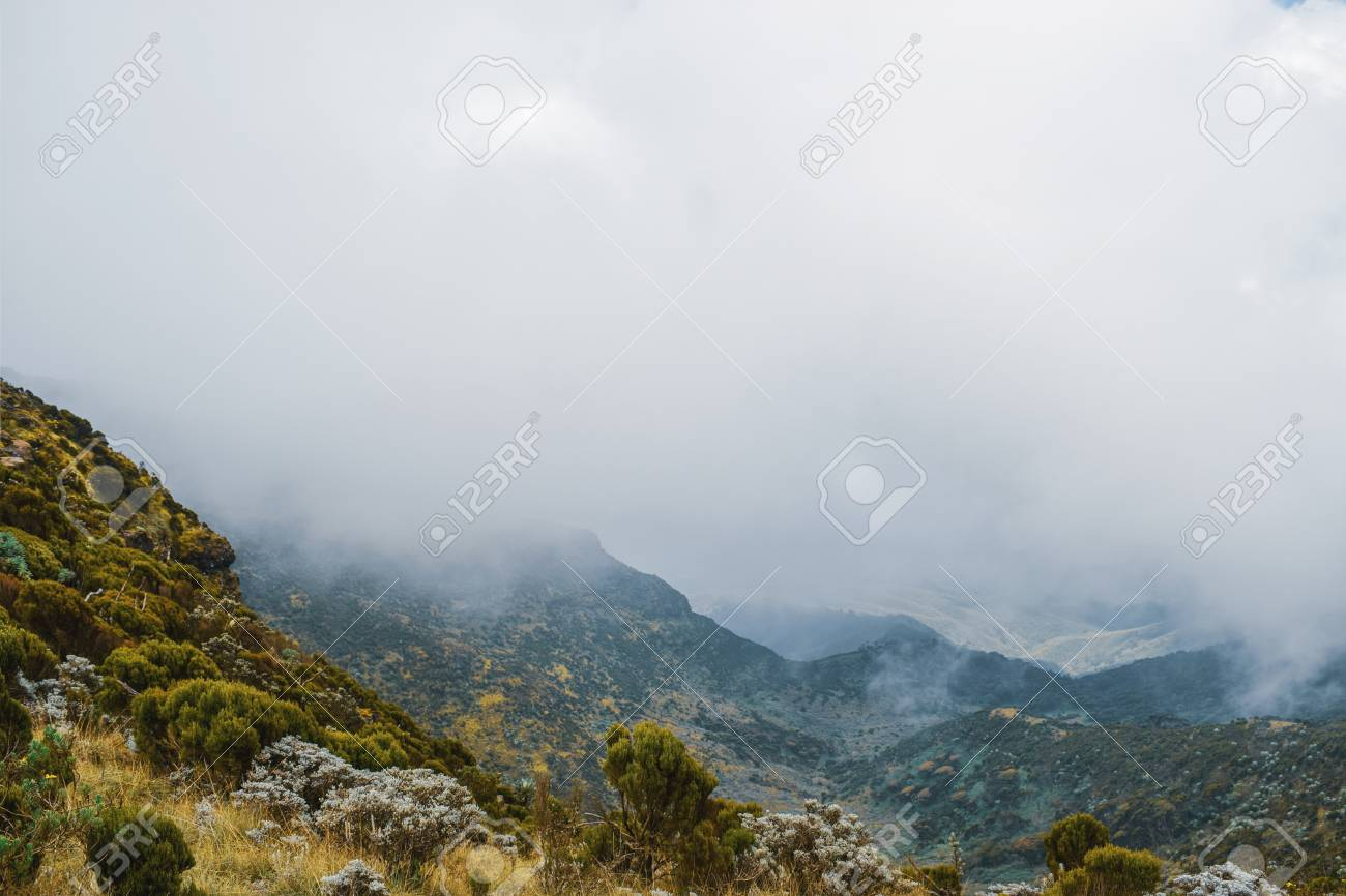 Mountain landscapes against a foggy background at the aberdare ranges on the flanks of Mount Kenya, Kenya - 122211416