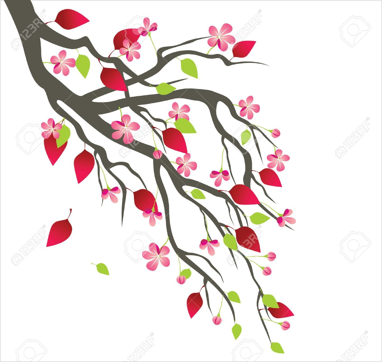Spring tree blossom Stock Vector - 14269718