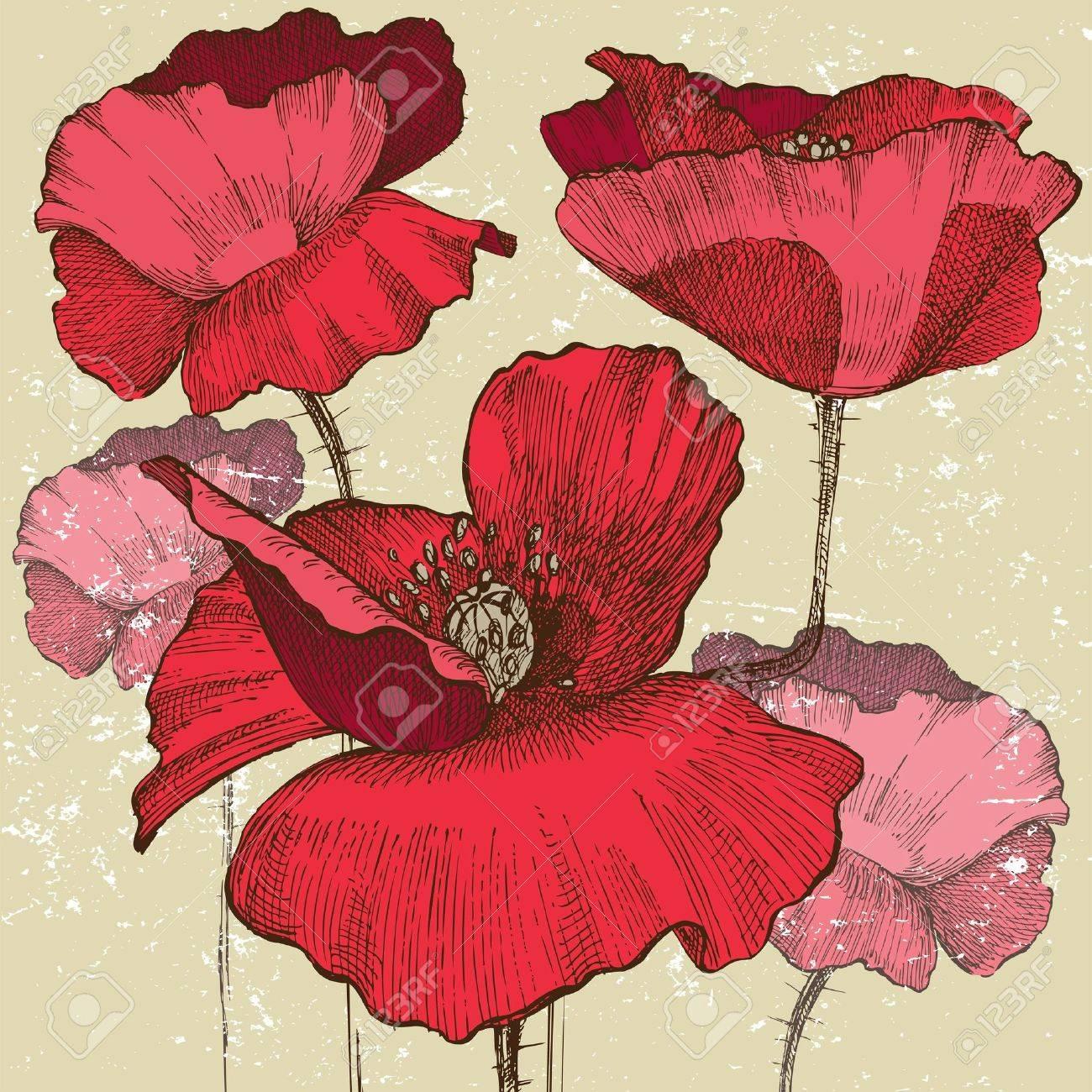 poppy flowers in vintage style Stock Vector - 13870292