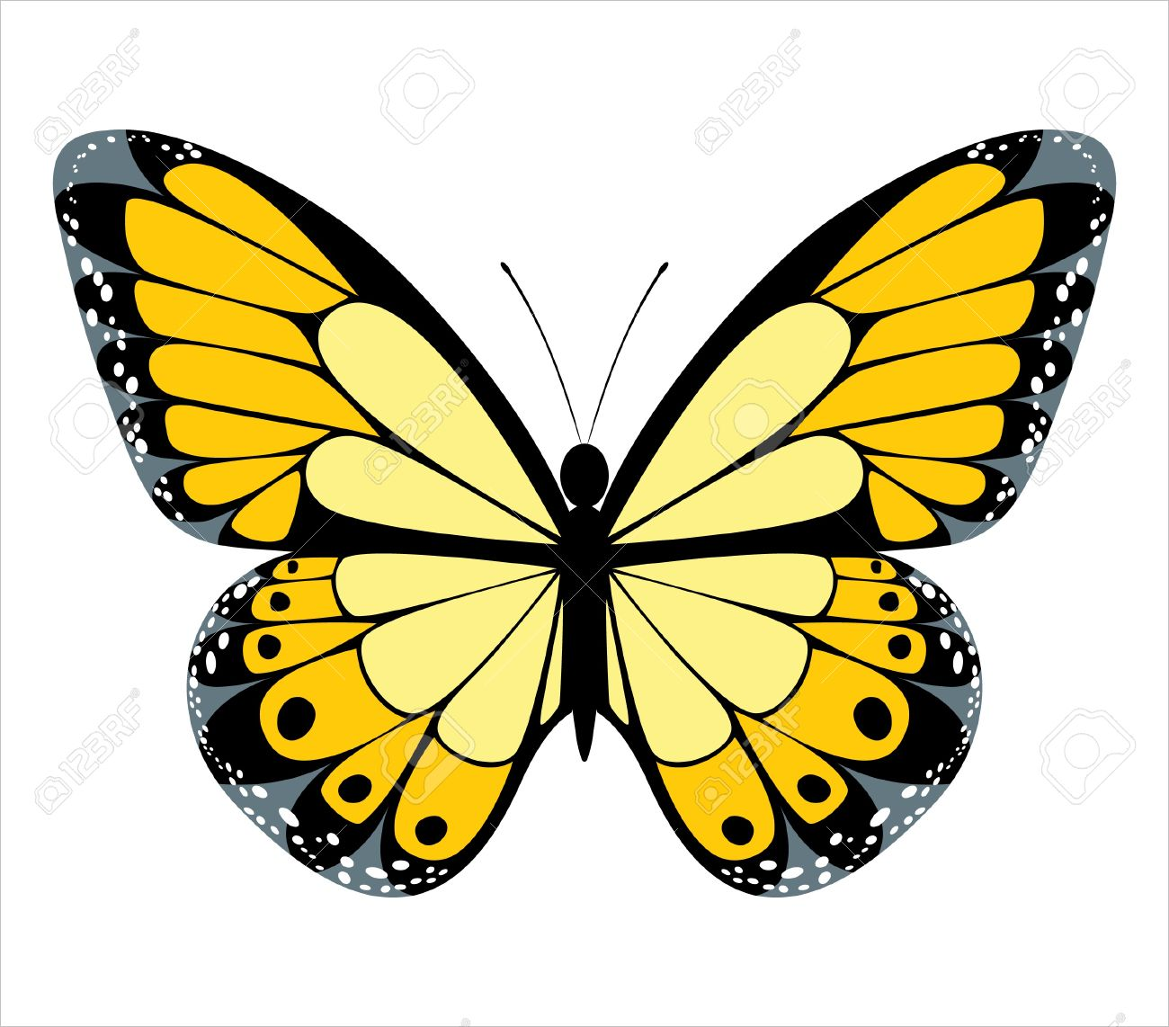 stylized butterfly icon royalty free cliparts vectors and stock illustration image 14270565 stylized butterfly icon