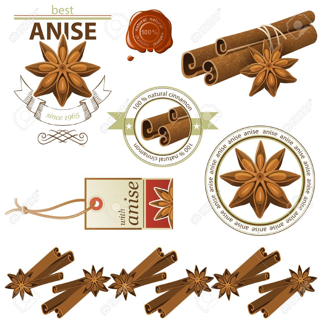 Anise stars and cinnamon sticks set Stock Vector - 20422905