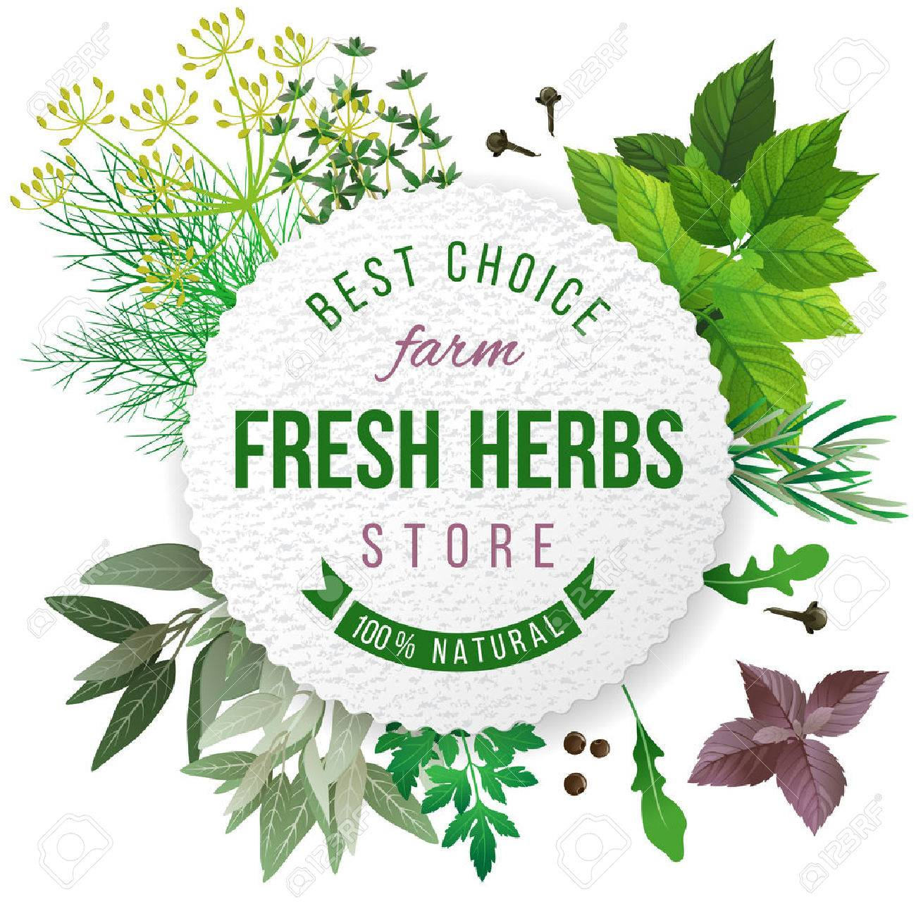 Fresh herbs store emblem - easy to use in your own design - 43870911