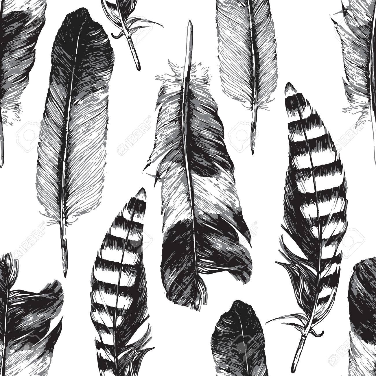 Seamless pattern with hand drawn feathers on white background - 44033594