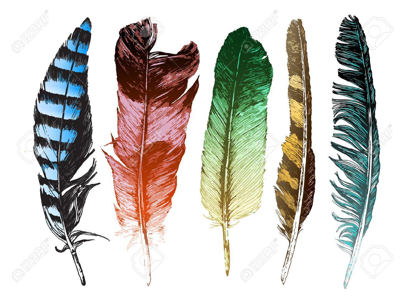 Resultado de imagen de plumas