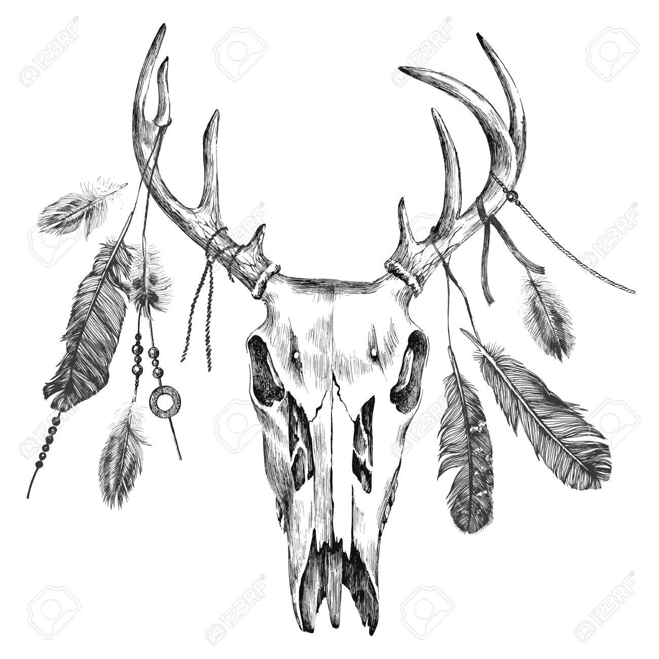 Hand drawn black and white illustration with deer scull and feathers - 48490985