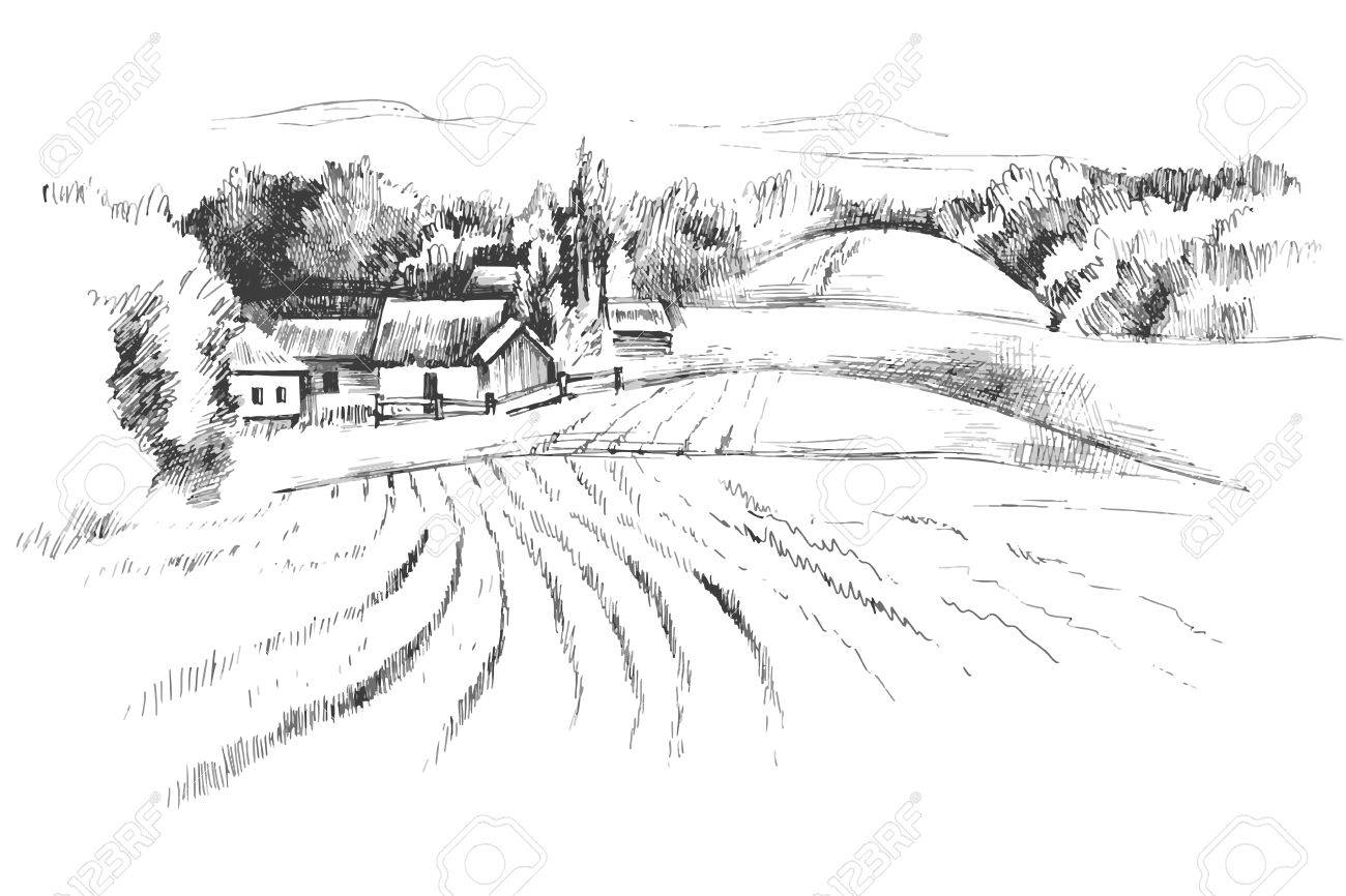 Hand drawn black and white landscape with fields - 50463945