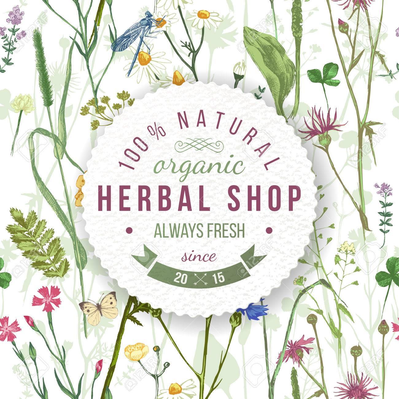 Herboristería Emblema Redondo Sobre Las Hierbas Y Flores Silvestres ...