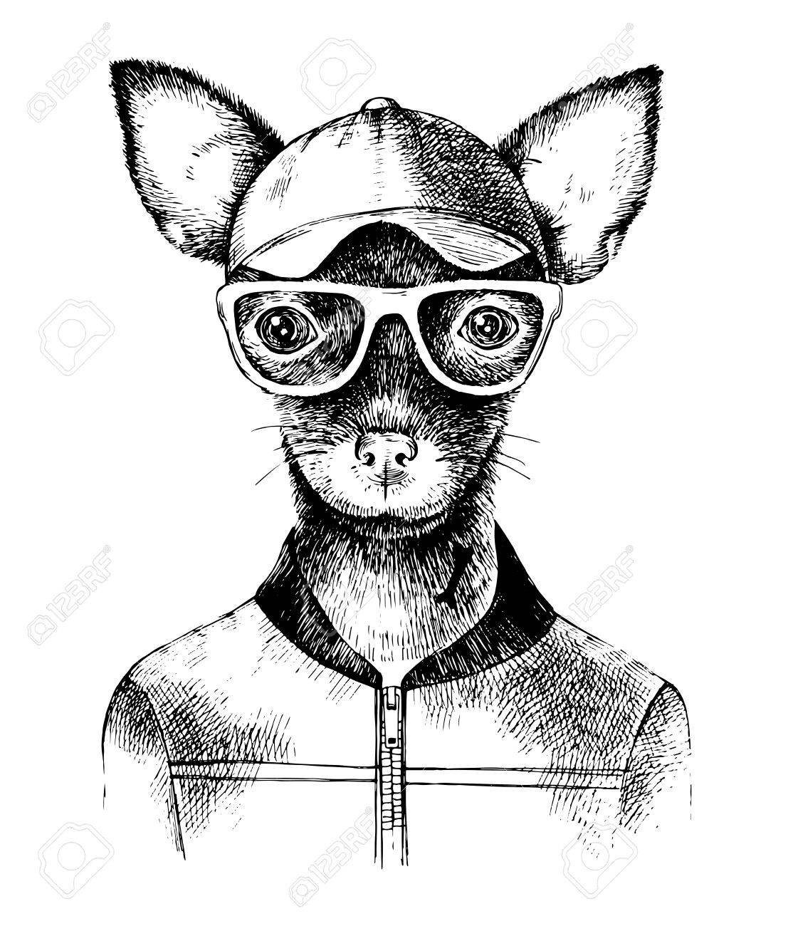 Hand drawn toy terrier hipster - 81581445