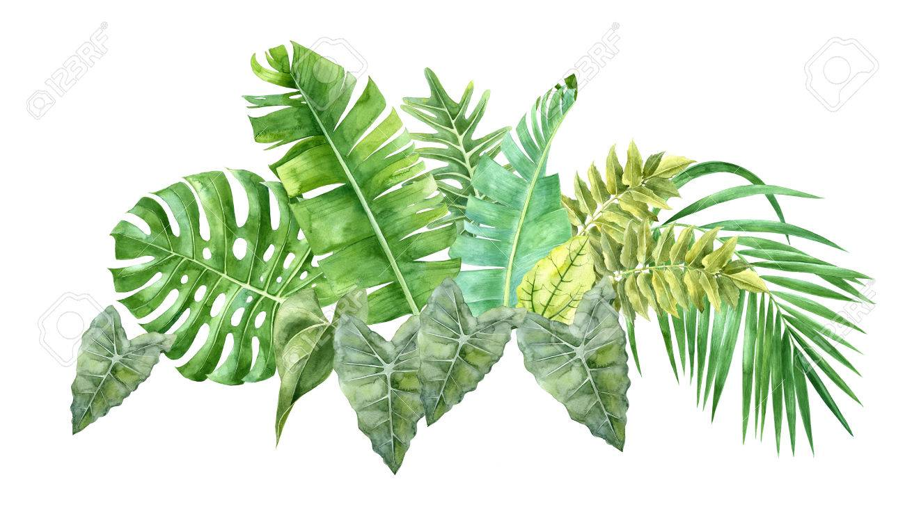 watercolor border with tropical leaves - 82310759