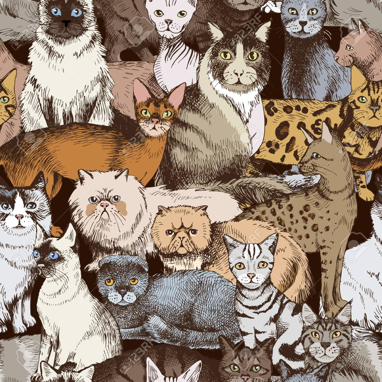 Seamless pattern with 16 colorful hand drawn purebred cats. Vector illustration - 128182548