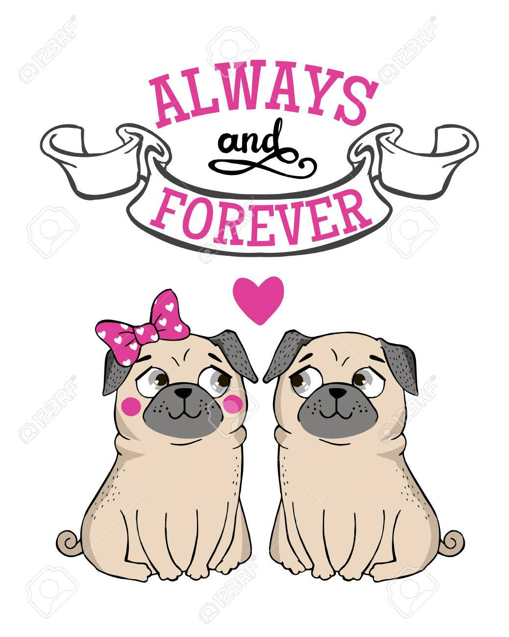 Valentines Day Greeting Card with funny Pug and lettering. Always and forever. Vector hand drawn illustration. - 50223699